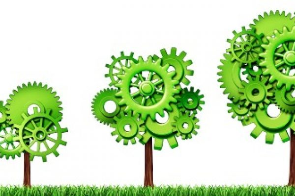 La forza del Green Marketing